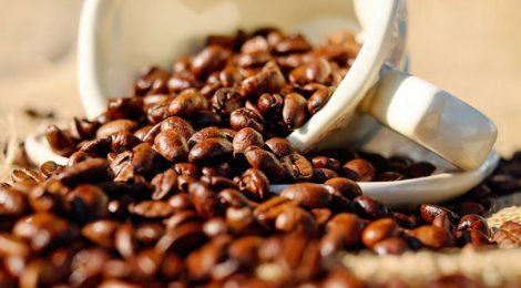 Exportação de café no Porto de Santos registra queda de 11,3% em 2018