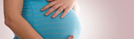 Projeto garante à gestante provedora seis meses de salário-maternidade sem ônus para empregador