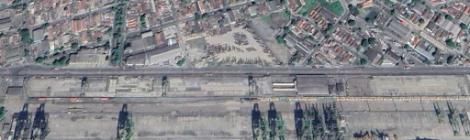 Marcados leilões de áreas para movimentação de celulose no Porto de Santos