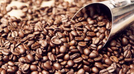 Queda na exportação de café por Santos vai beneficiar o Porto de Vitória