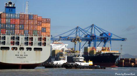 Porto de Itajaí conclui Primeiro Semestre de 2018 com movimentação positiva na movimentação total de cargas