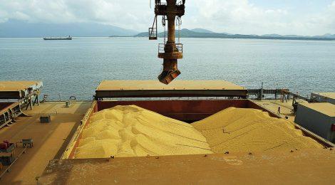 Crescem exportações de soja e milho pelos portos do Arco Norte
